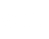 ralfnature